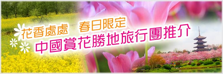 中國旅行團春日賞花系列