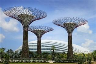 皇家加勒比國際遊輪~海洋水手號 新加坡(濱海灣花園、S.E.A.海洋館*) 、 馬來西亞(吉隆坡、檳城)、泰國(布吉島) 7天豪華郵輪假期(SRM07A)
