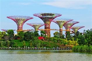 公主郵輪~太陽公主號 新加坡(Gardens by the Bay)、 越南(胡志明市、芽莊)、香港  7天豪華郵輪假期(RASPH07)