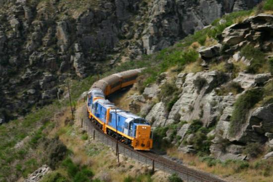 泰瑞谷觀光火車