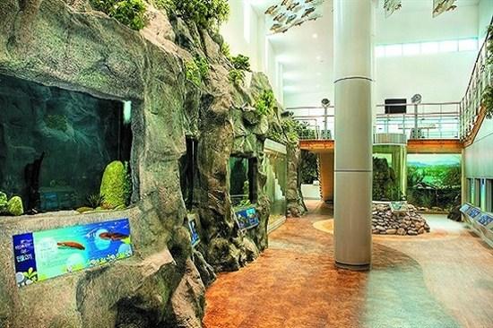平昌東江淡水魚生態館