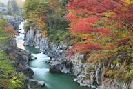 『日本第一美溪』及「賞紅葉名所」嚴美溪