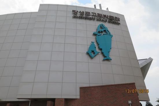 長生浦鯨魚博物館