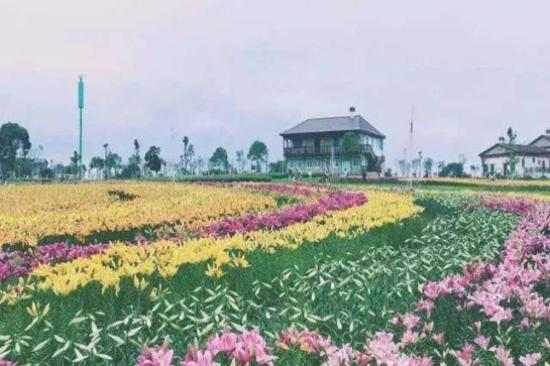 武漢花博匯