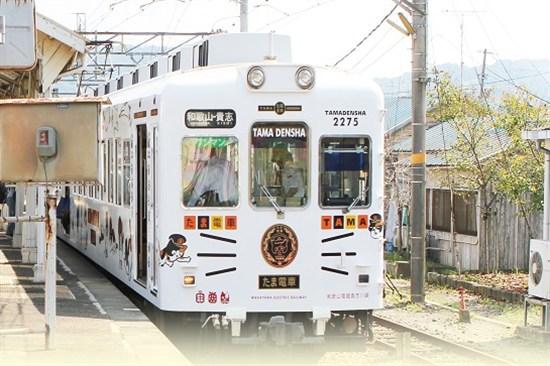和歌山貓電鐵