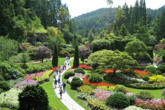 寶翠花園3