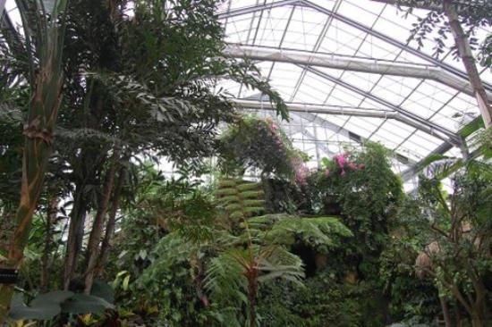 中科院植物園-熱帶雨林博物館