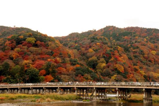 嵐山渡月橋2