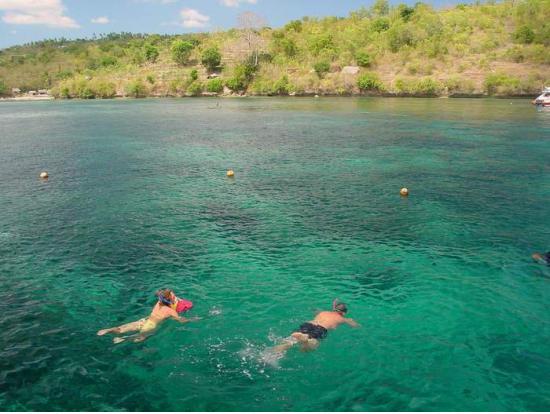 佩尼達島(Nusa Penida)