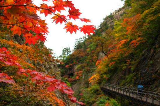 五臺山國立公園