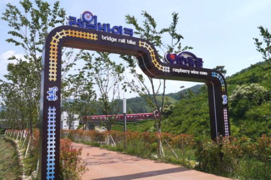 金海洛東江Rail Bike體驗