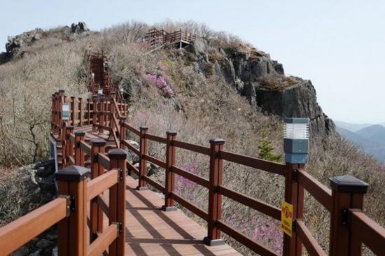 雞龍山頂展望台