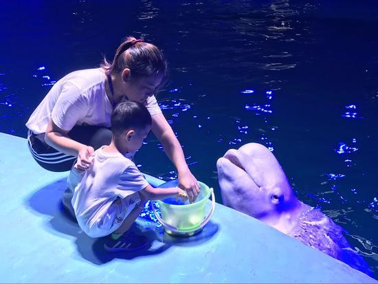 小白鯨親密接觸
