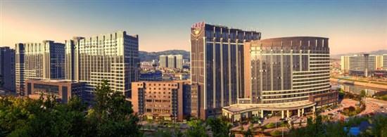 張家界大成山水國際酒店