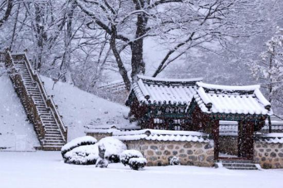 寧越莊陵冬天