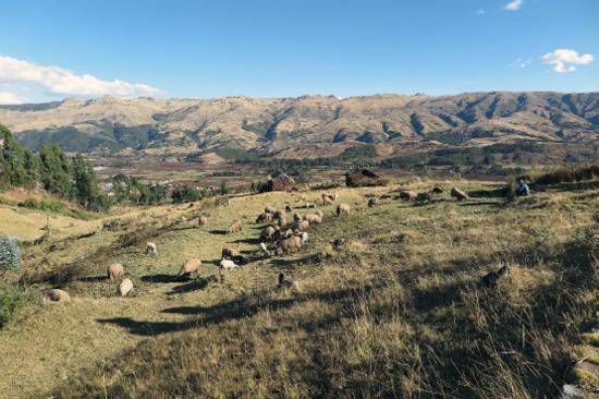 【聖谷】Sacred Valley(From Pixbay)