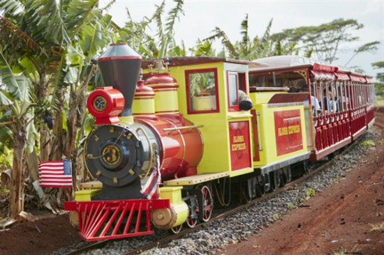 都樂(Dole)菠蘿種植園小火車