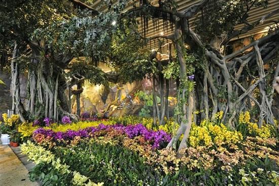 花之城景區