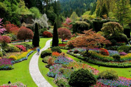 寶翠花園2