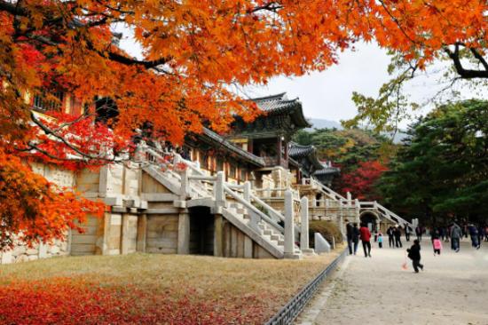 慶洲佛國寺