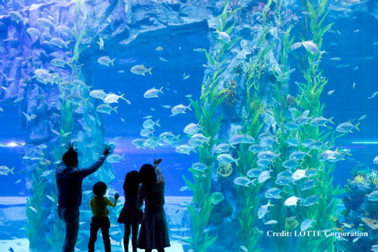 Lotte World Aquarium 樂天水族館