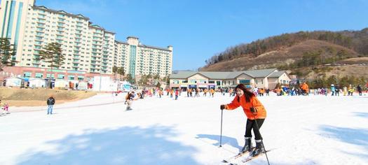 《會員推廣碼 GK980,滿$500再減$50》【當地遊@韓國】江原道奧麗山莊OAK VALLEY滑雪教學課程一日遊 (保證2人成團‧已包小費)